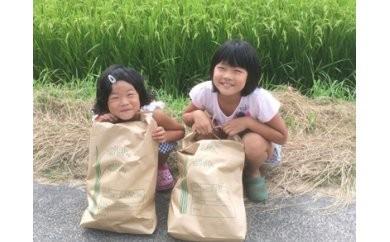 [041010]【29年産】羽賀農園のヒノヒカリ15kg