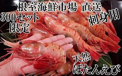 CA-14075 根室海鮮市場<直送>刺身用ぼたんえび600g(9~15尾)[430348]