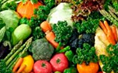 [№5641-0417]おまかせ滝川産農産物野菜詰合せ約10kg【2018年発送】