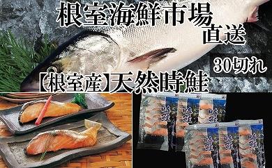 CA-14073 根室海鮮市場<直送>北海道産時鮭真空パック5切×6P(計30切)[430346]