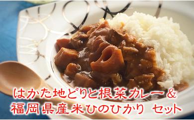 [№5776-0091]博多地鶏根菜カレー&ひのひかりセット