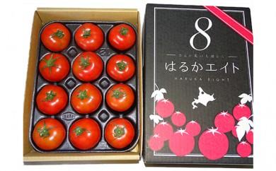 [№5894-0074]北海道 美深町産 フルーツトマト「はるか8(エイト)」 約1kg