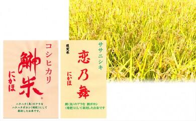 [№5685-0215]鰰米にかほコシヒカリ2.5kgと恋乃舞ササニシキ2.5kg/計5kg