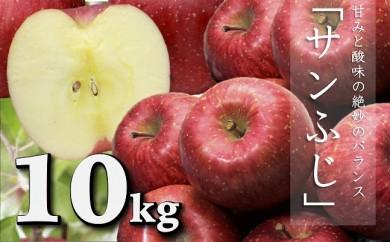 H128 個数限定 サンふじリンゴ 約10kg