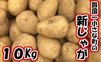 5月発送予定【四国一小さな町のジャガイモ】採れたて!新じゃがいも10Kg