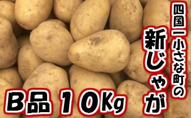 5月発送【四国一小さな町のジャガイモ】採れたて!新じゃがいもB品10Kg