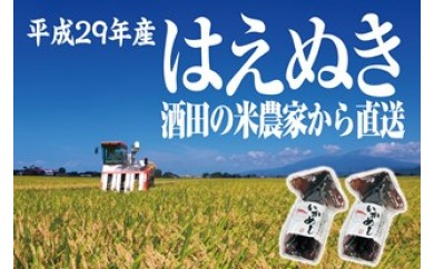 NA268 平成29年産米 農家の米直送はえぬき5kgとおまけ
