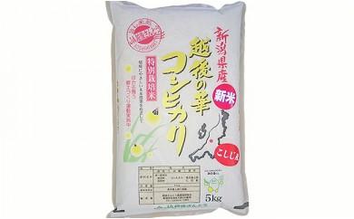1-342 新潟県長岡産コシヒカリ(越路地域)5kg