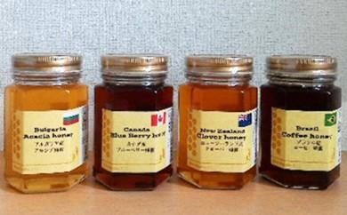 [№5745-0697]世界のハチミツ食べ比べセット