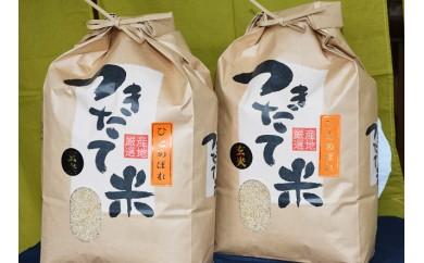 B-16 宮城の米「ひとめぼれ」(玄米)8kg×2