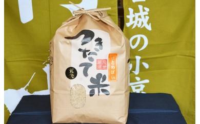 A-34 宮城の米「ひとめぼれ」(玄米)8kg