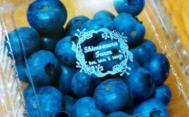 【子育て農家直送】大野見育ちのブルーベリー(冷凍1.5kg)