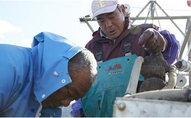 【期日指定可】吉田水産のむき身と殻付き牡蠣セット