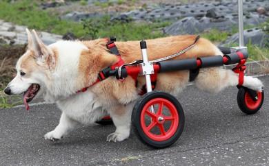 [№5644-0395]中型犬用三輪車椅子(背丈33~65cm 体重22キロ以下)