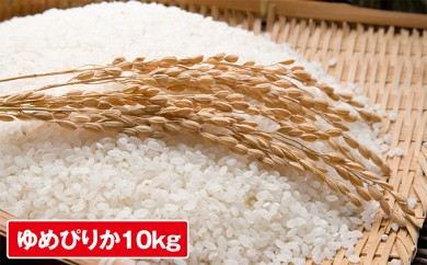 [№5746-0113]倶知安産ゆめぴりか5kg×2袋