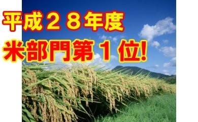 【500袋限定ja】平成29年産はえぬき玄米30kg