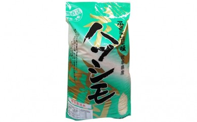 [№5905-0086]揖斐・大野、馬渕さん家の「特別栽培米ハツシモ」