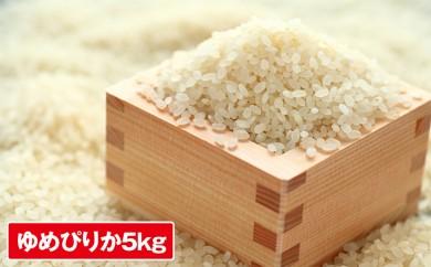 [№5746-0110]倶知安産ゆめぴりか5kg