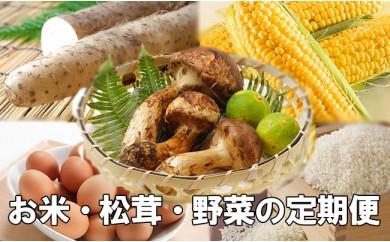 HMG211 【限定50個/目玉は松茸!定期便】八幡平市産白米8kgと野菜セット4回
