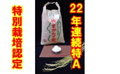 【500袋限定】平成29年産特別栽培米「はえぬき」玄米30kg
