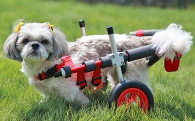 [№5644-0389]小型犬用二輪車椅子(背丈23~35cm 体重8キロ以下)