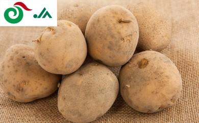 [№5794-0071]北海道共和町産らいでん馬鈴薯男爵 L規格約10kg