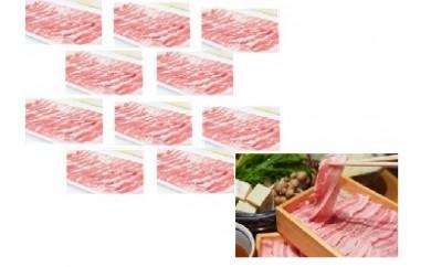 【B05007】特盛!鹿児島県産豚バラスライス10パックセット(約5kg)