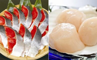 [№5742-0390]帆立貝柱500g・紅鮭切身5切×2 セット