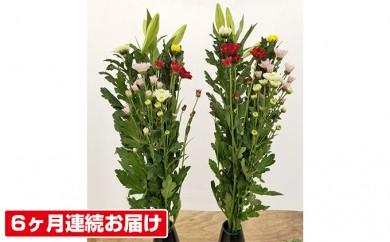 [№5706-0077]【6ヶ月連続お届け】仏花1対