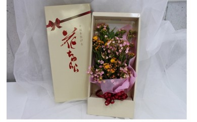 カラフル・長持ち! 沖縄生まれの新しい切り花 「ちゅらら」