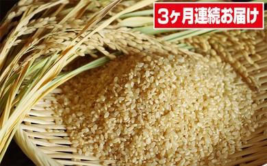 [№5734-0021]【兼子農園】 泉崎村産 コシヒカリ(玄米) 10kg×3回(3ヶ月連続)