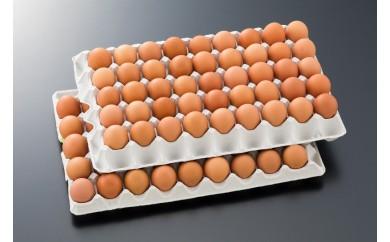 MK-2904_新鮮赤卵「きみ恋卵」10kgセット