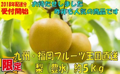A262.九州・福岡フルーツ王国より直送.梨(豊水)約5kg/2018年8月~9月配送