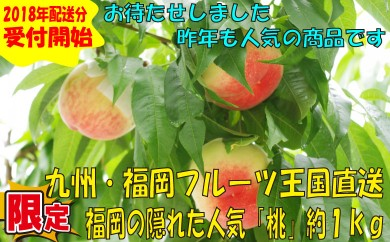 A261.九州・福岡フルーツ王国より直送.福岡の隠れた人気「桃」約1kg/2018年5月~6月配送