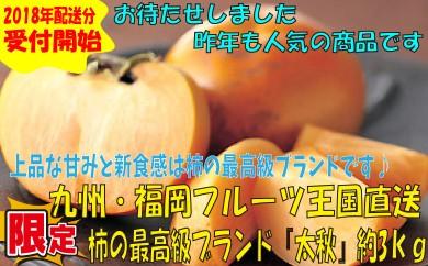 A266.九州・福岡フルーツ王国より直送.柿の最高級ブランド『太秋』約3kg/2018年10月~11月配送