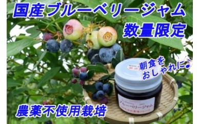 【No.161】朝食を彩る♪贅沢な国産ブルーベリージャム6個セット