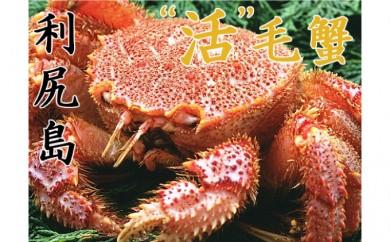 [№5888-0339]超希少!幻の特大【活】毛蟹1kg以上1尾※クレジット決済限定
