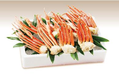 869 ばんどう太郎グループの蟹専門店より 特選 家族で かにギフト ボイルずわい8肩(2kg)限定