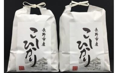 【29年産】長野市産こしひかり10kg