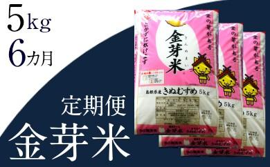 40-SS-4 BG無洗米・金芽米【定期】きぬむすめ 5kg/6ヵ月
