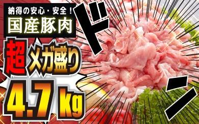 B0-67 【国産豚肉】どど~んと4700g!!! 【メガ盛り】
