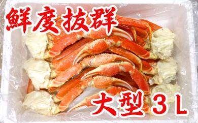 20-78 【数量限定】鮮度抜群!!大型本ズワイガニ切足(2kg・3Lサイズ)