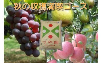 B-75 30年_秋の収穫満喫コース