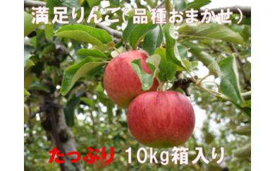 A-242 30年_満足りんご(品種おまかせ)10kg