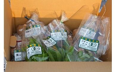 有機JAS 季節の野菜詰め合わせ