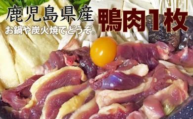 A-059 鹿児島県産自然育ちの鴨肉 1枚