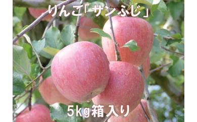A-239 30年_りんご「サンふじ」5kg