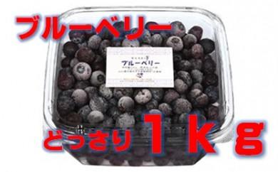 【F004】カルストの雫 冷凍ブルーベリー【10pt】