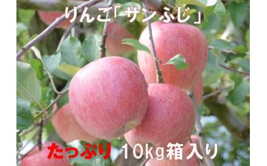 A-240 30年_りんご「サンふじ」10kg