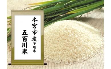 9 五百川米 (早場米)10kg